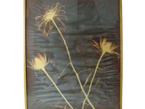 "Lot #2983 Agnes Denes ""Kingdom Series"" Roses X-Ray Monotype o"
