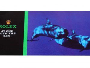 Lot #6381A – Rolex Sea-Dweller Submariner Brochure Ephemera Ephemera Rolex Brochure