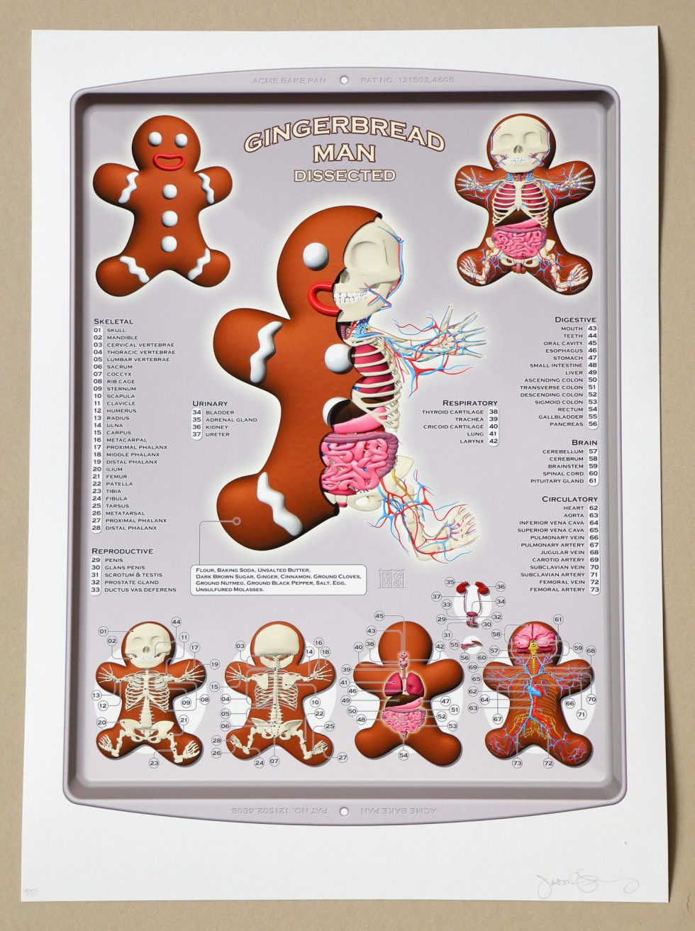 Lot #8577 – Jason Freeny Gingerbread Man Dissected Print Limited Edition of 75 Art [tag]